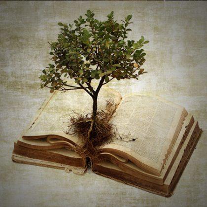 TeologiaBiblica-CourseCover