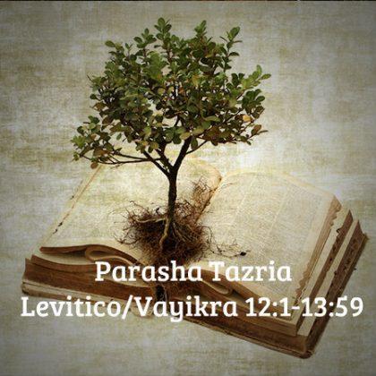 TeologiaBiblica-CourseCover 123