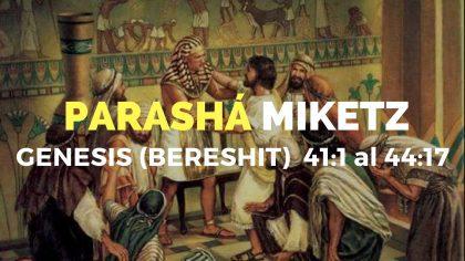 PARASHA-3