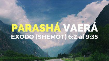 PARASHÁ VAYIGASH (3)