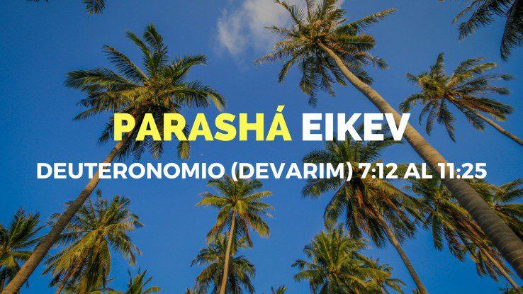 Parasha-2