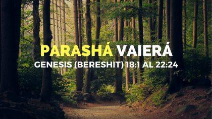 Parasha-4