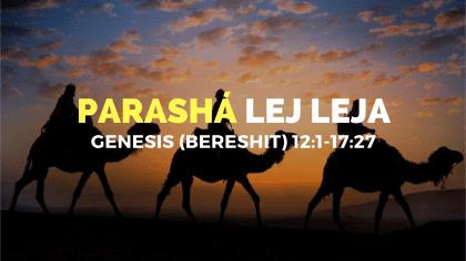 Parasha-7