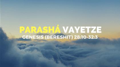 Parasha-8